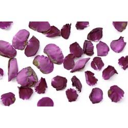 PURPLE ROSE FLOWER TEAS